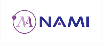 The Nano and Advanced Materials Institute Limited