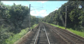 Intelligent Tree Management System for Railway
